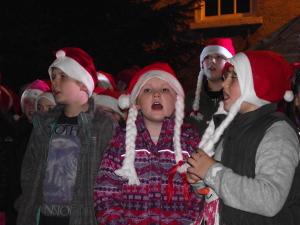 Christmas Lights 2014 037