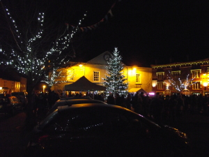 Christmas Lights 2014 059